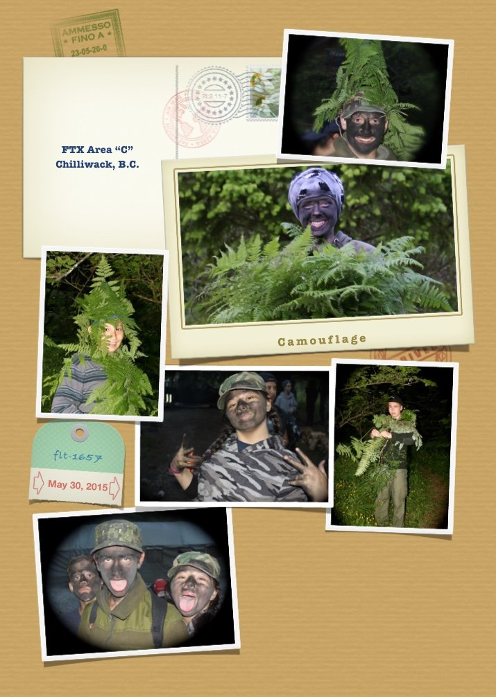 Camouflage Photos from May 30, 2015